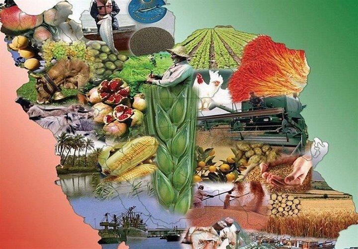 اشتغال پایدار 20 میلیونی با آبخیزداری/ پنج فناوری آبخیزداری برای تأمین امنیت غذایی 500 میلیون نفر چیست؟
