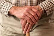 رشد آهسته و پیری جمعیت در ۲ دهه آینده