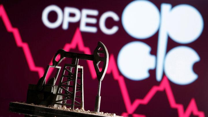 گستاخی نفتی امارات