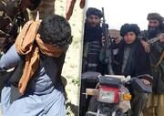تحولات افغانستان به نفع منطقه و ایران نیست