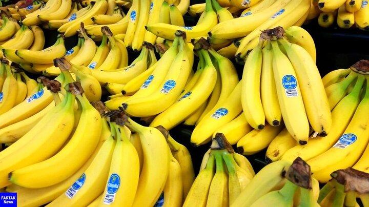علت اصلی گرانی میوه محبوب مردم مشخص شد