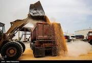 سود چند تریلیاردی تخفیف واردات کالاهای اساسی  در جیب واردکنندگان