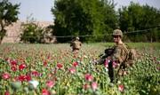 آینده تولید و تجارت مواد مخدر در دوره طالبان